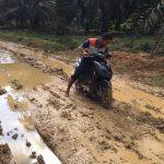 Proyek Perkerasan Jalan DPUPR Tebo Mangkrak