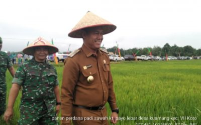 Sukandar : Jangan alih fungsi lahan sawah