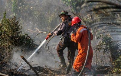 Jambi Siaga Darurat Bencana Karhutla Selama Tiga Bulan