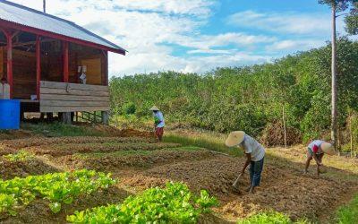 RLU dan IDH, Memberdayakan Masyarakat di Sekitar Kawasan Hutan Kabupaten Tebo