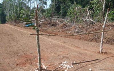 Penggusuran Lahan Pembukaan Jalan di Rantau Langkap Ternyata Proyek POKIR Dewan
